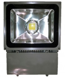 Reflector Industrial 50W